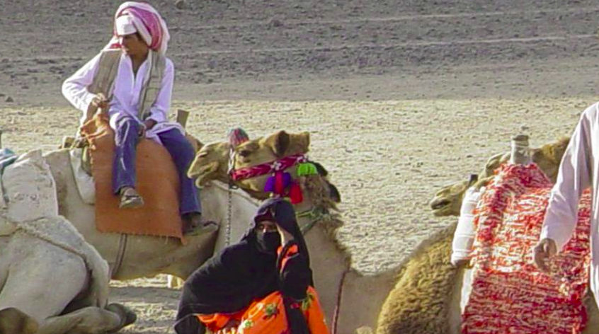 Extended safari Sahara Park from Hurghada - halfday trip